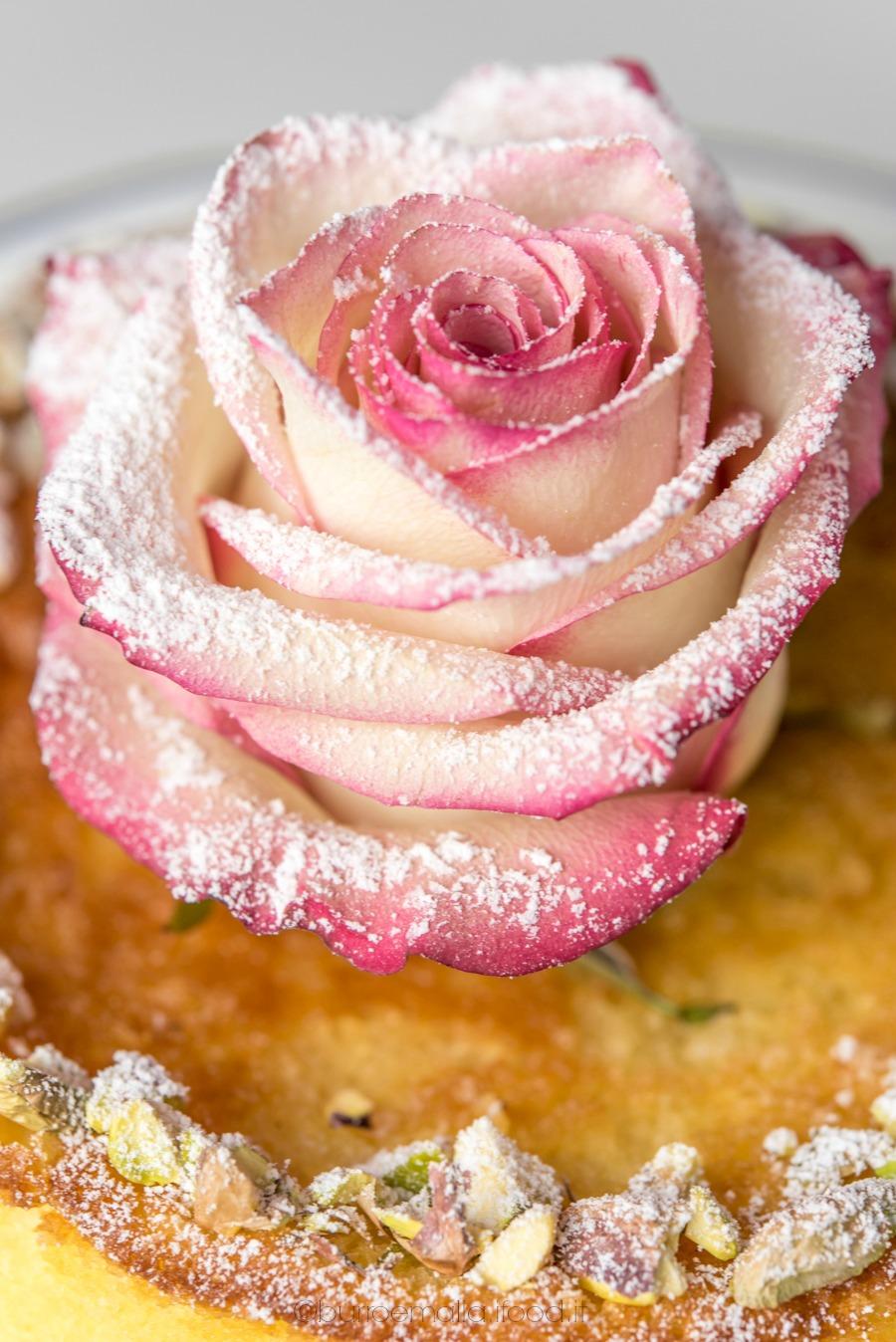 persian-love-cake-5